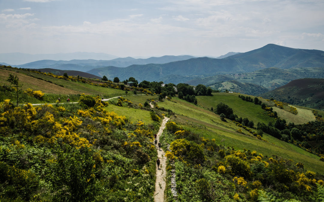 Why am I doing the Camino?